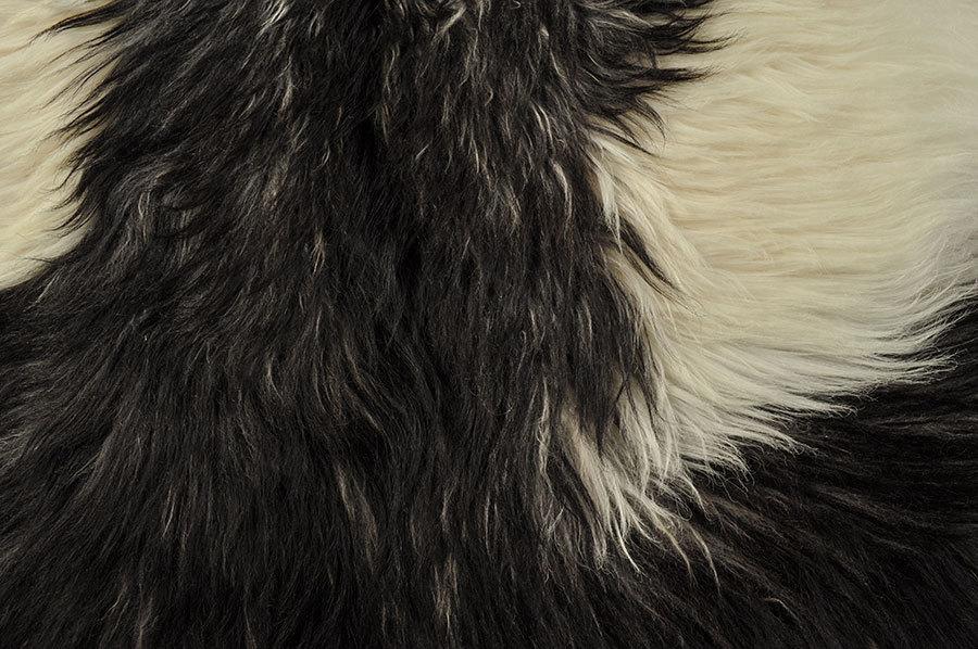 ziegenfell langhaar schwarz weiss 85 x 70 cm kuhfelle online. Black Bedroom Furniture Sets. Home Design Ideas