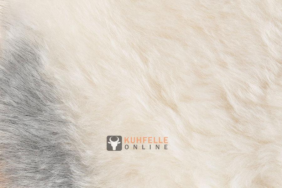 lammfell teppich grau beige 180 x 120 cm kurzwollig bei kuhfell bestellen. Black Bedroom Furniture Sets. Home Design Ideas