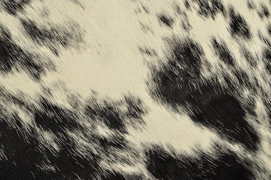 kuhfell schwarz weiss salz pfeffer 210 x 155 cm kuhfelle online. Black Bedroom Furniture Sets. Home Design Ideas